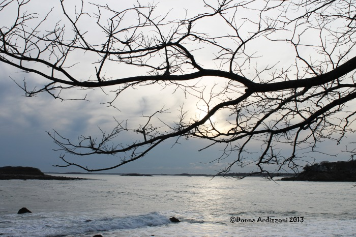 February 26, 2013 late afternoon on Shore Road