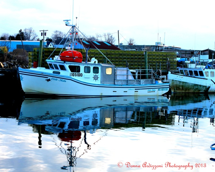 February 5, 2013 reflec on Cripple Cove