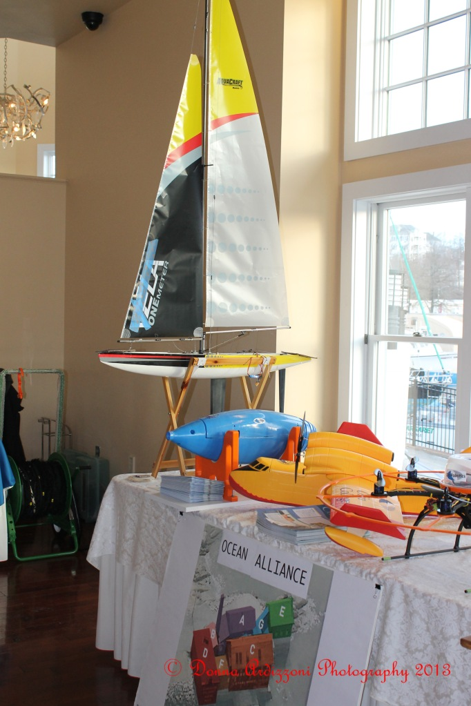 February 7, 2013 Ocean Alliance display