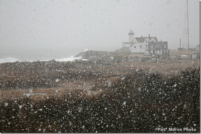 Gloucester 2-23-13 (8a) Snow