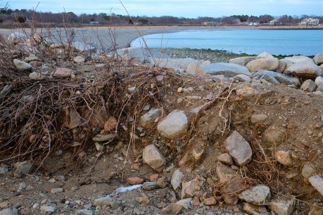 Niles Pond Brace Cove Storm Damage -5 ©Kim Smith 2013