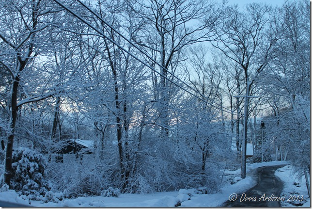 Pretty morning after the snow