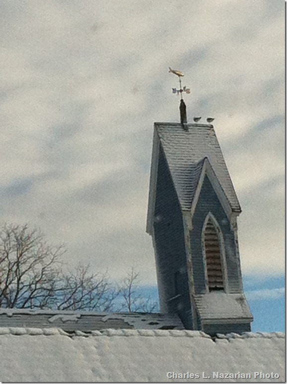 Blue Church Steeple with Two Gulls, February 2013, copywrite Charles Nazarian