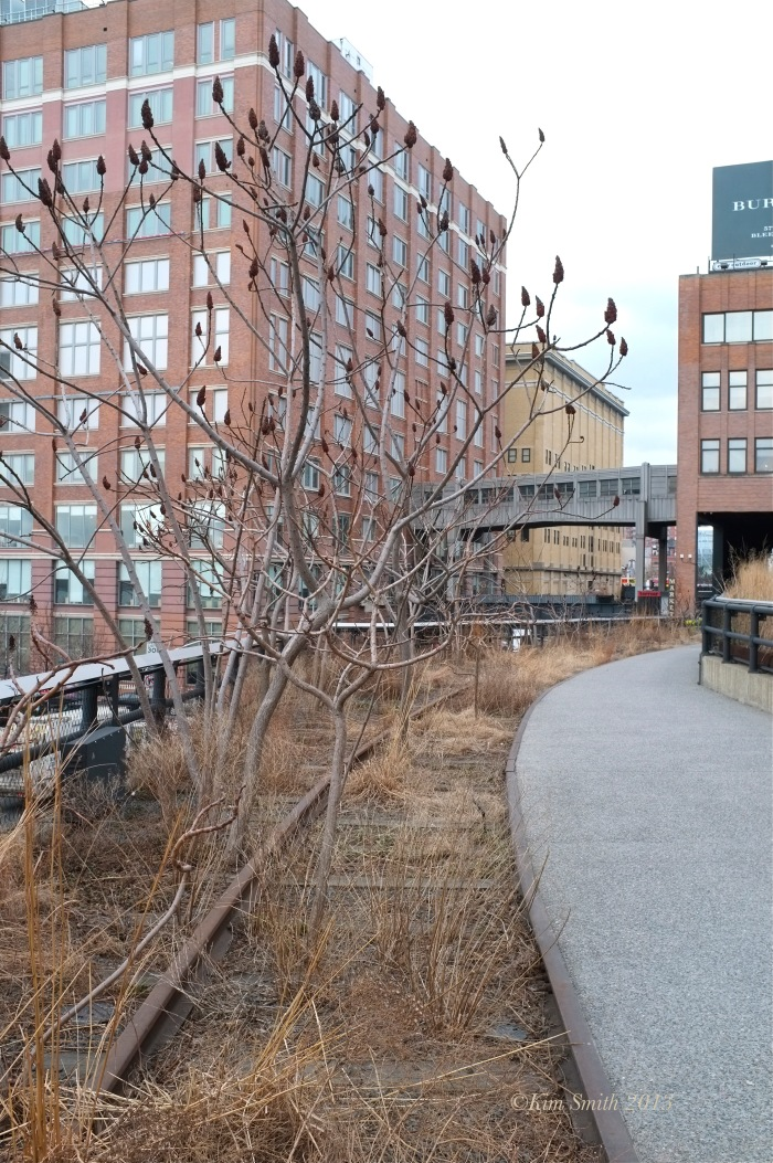 High Line ©Kim Smith 2013. copy