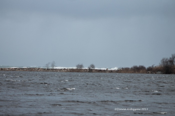 March 6, 2013 Nile Pond with Brace Cove crashing