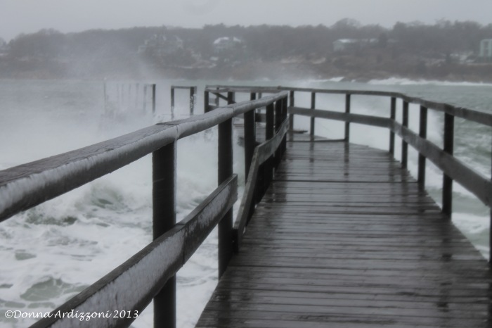 March 7, 2013 The Magnolia Pier