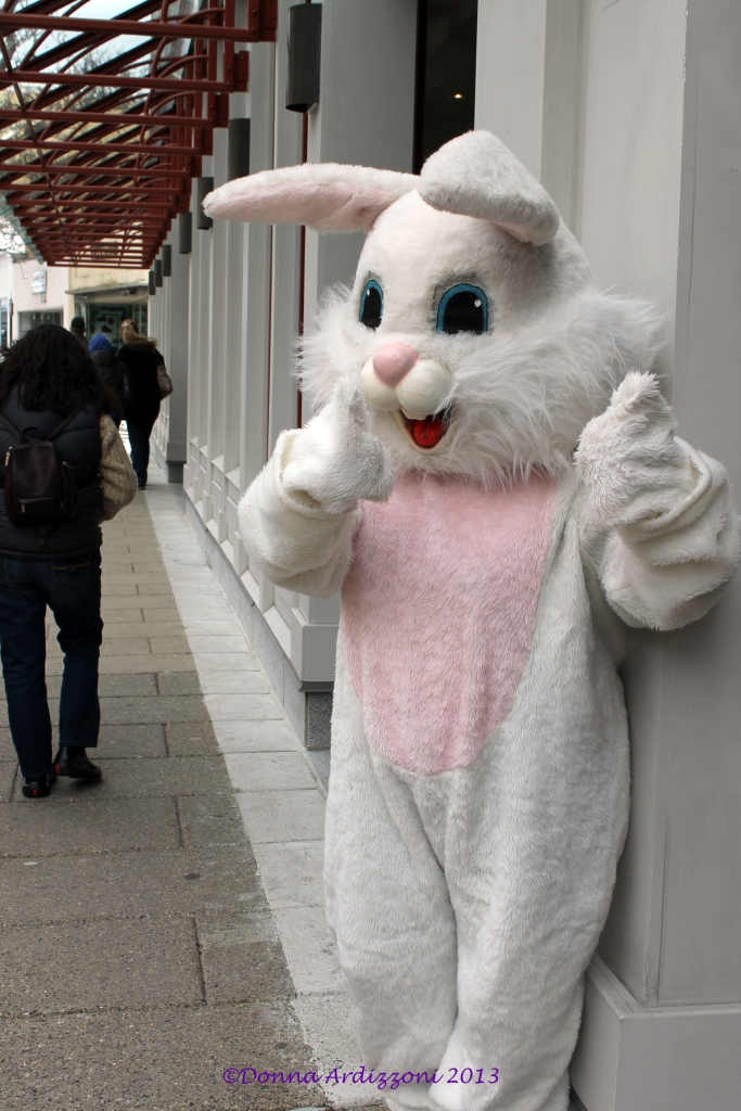 Our Fun Easter Bunny