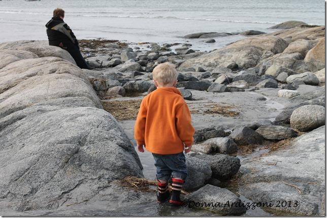 Exploring the beach Cole
