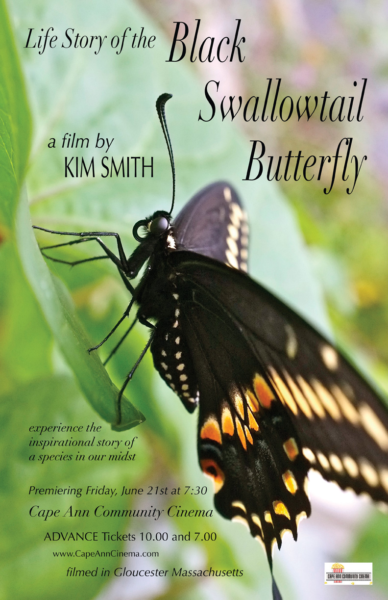 FINAL web  Life Story of the Black Swallowtail Movie poster CACC -1