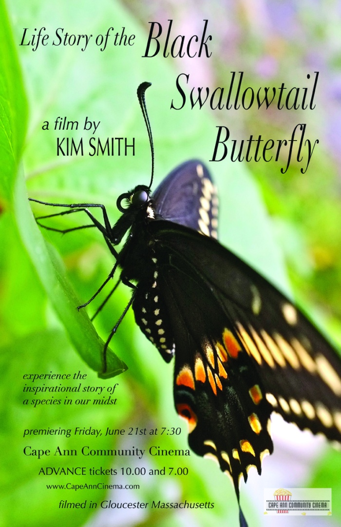 Life Story of the Black Swallowtail Movie poster