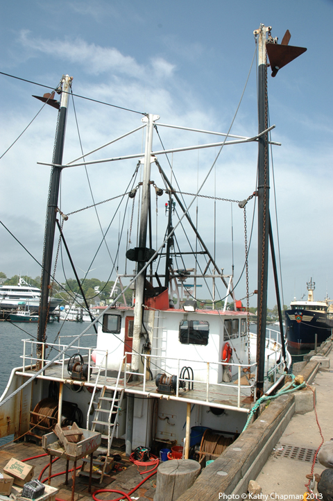 CaptJoe6682