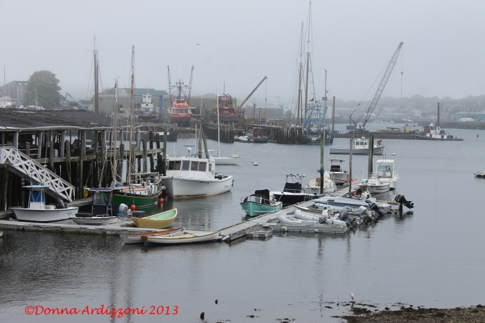 May 20, 2013 foggy day on the Neck