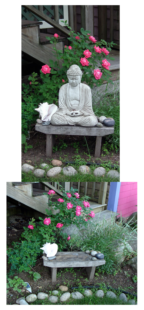brendas buddha before and now