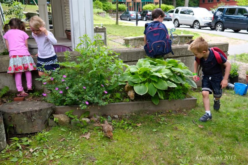 SHED Children's Campus kids & chickens ©Kim Smith 2013
