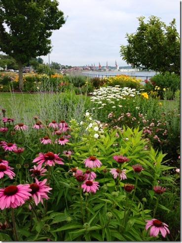 GGT gardens 1