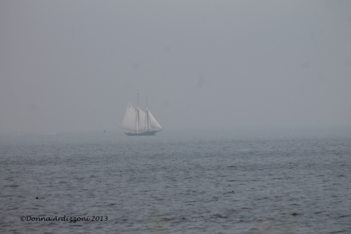 August 13, 2013 Lannon in the fog coming about Magnolia Point