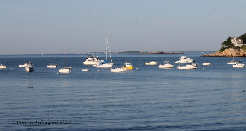 August 17, 2013 early morning in Magnolia Harbor