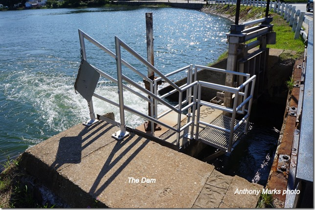 Brown,s Grist Mill Dam