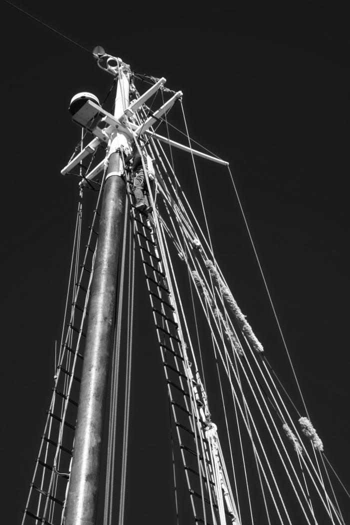 DSCF3101