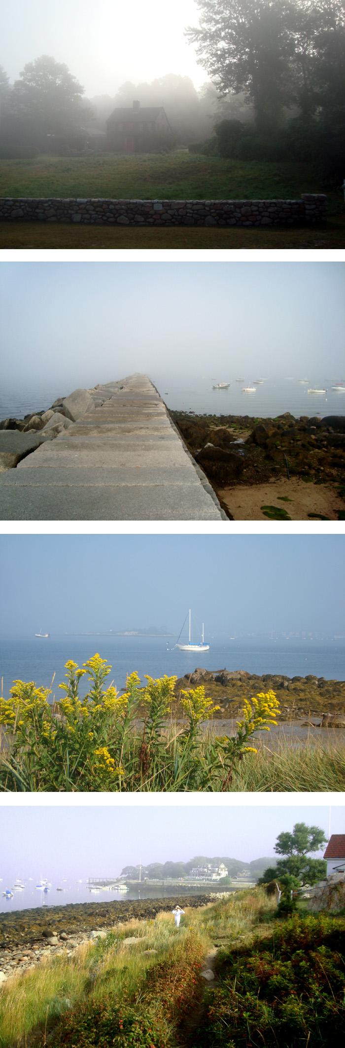 foggy eastern point