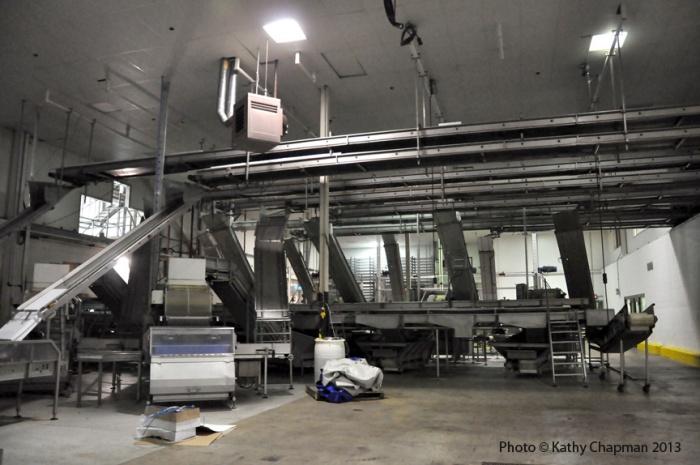 Herringproduction