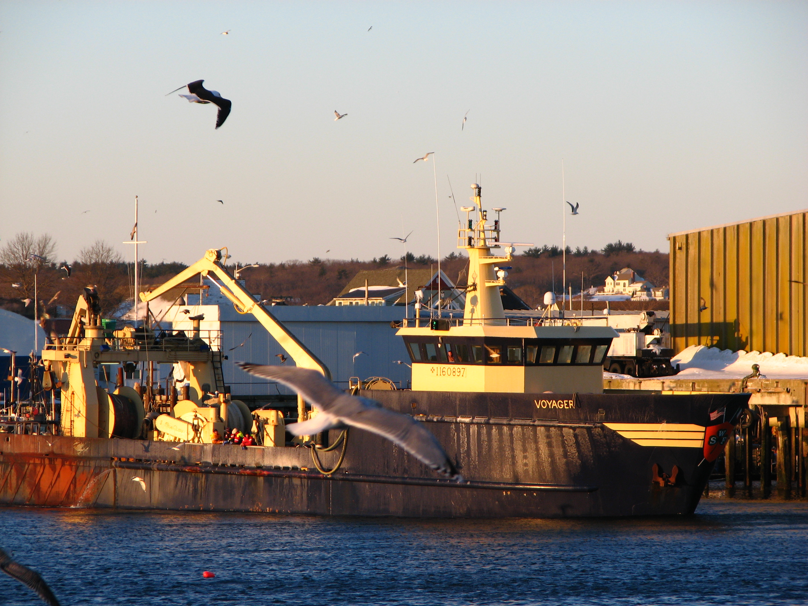 Current state of the gloucester fishing industry for Gloucester ma fishing