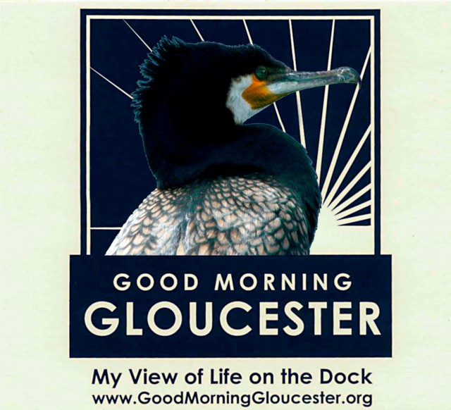 GMG cormorant sticker copy