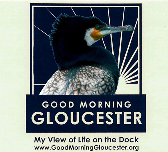 GMG cormorant sticker copy