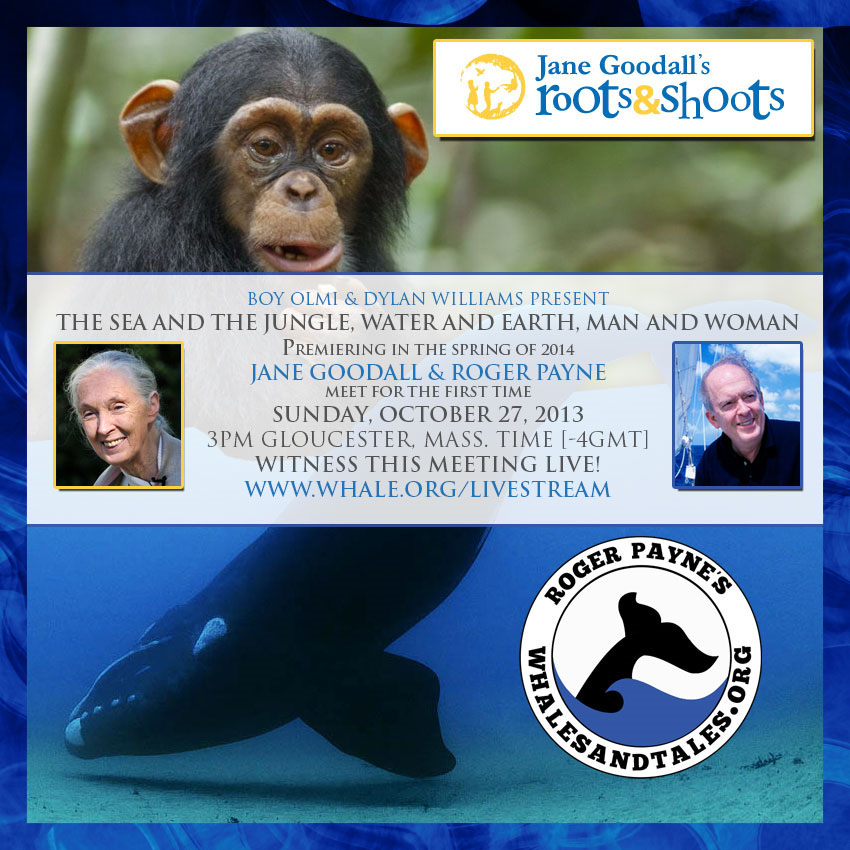 ocean alliance and jane goodall