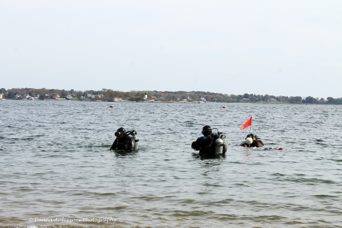 October 19, 2013 divers at Half Moon Beach