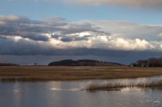 Hog Island from Farnham's