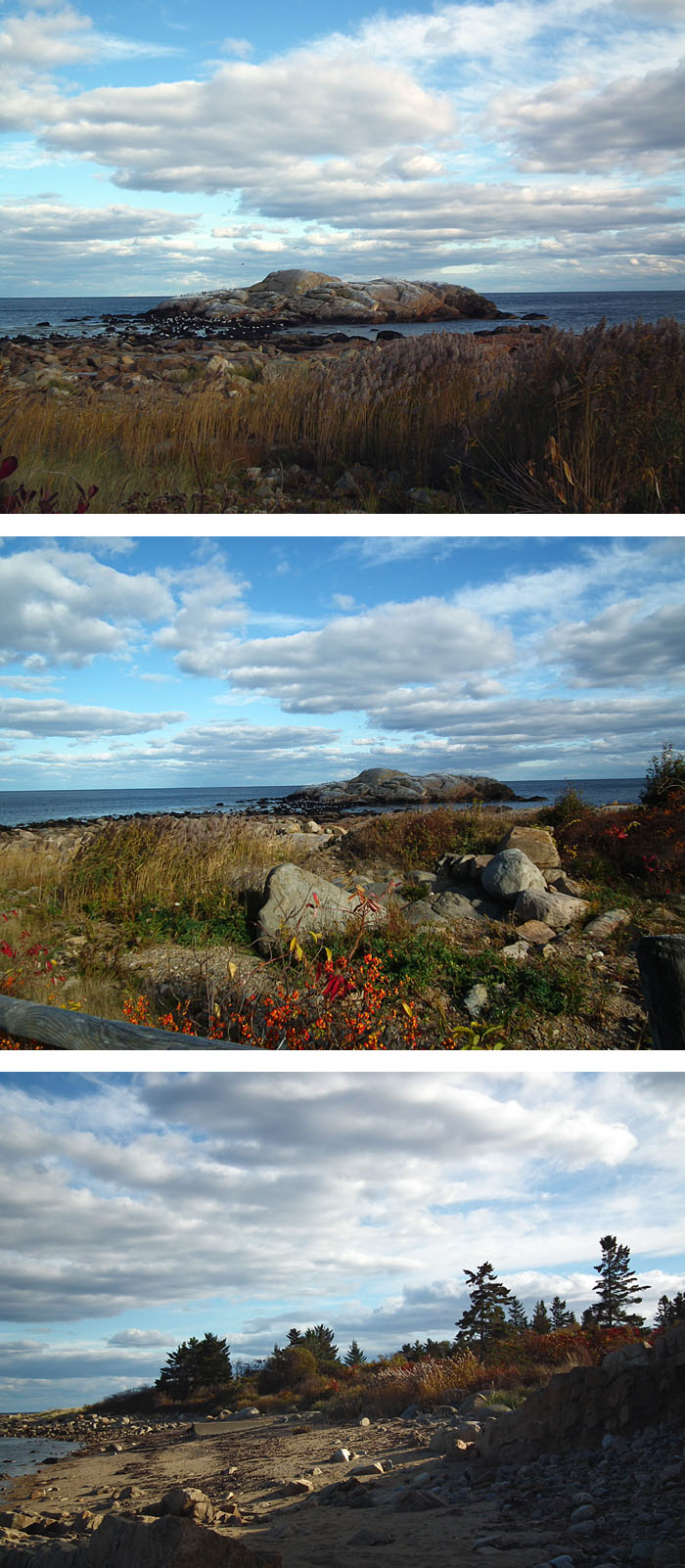 magnificent eastern point fall day