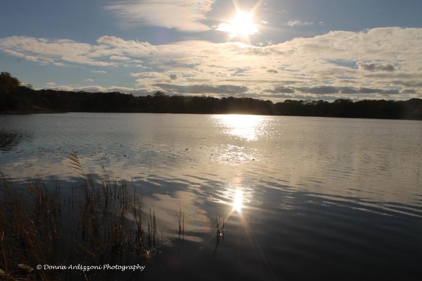 November 3, 2013 Niles Pond Gloucester, MA