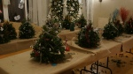 boxwood tree party 2013 184