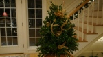 boxwood tree party 2013 190