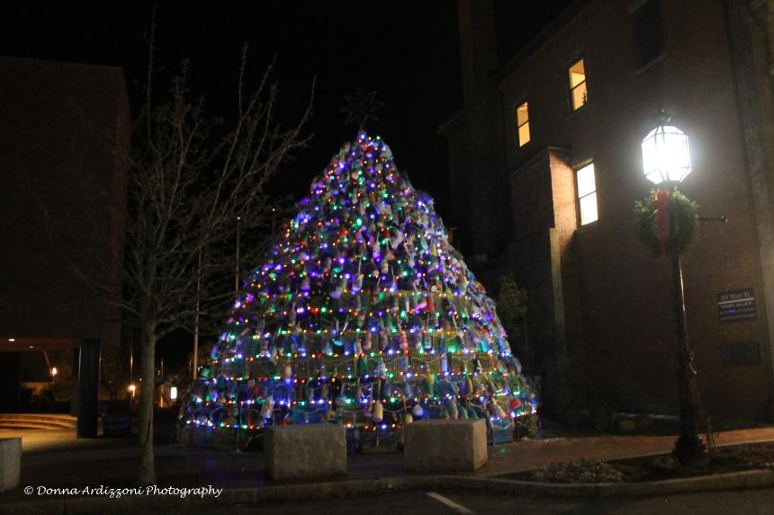 December 24, 2013 Gloucester's Lobster Trap Tree