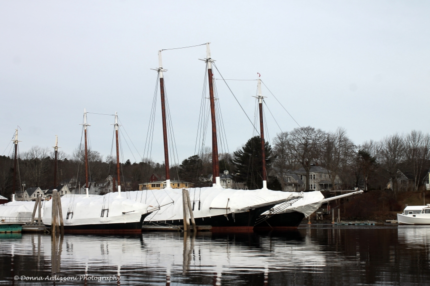 December 8, 2013 shrink wrapped in Camden Harbor