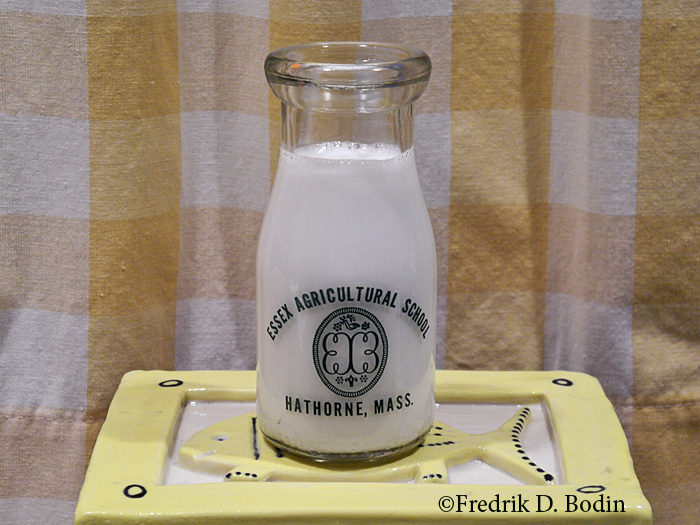The Essex Agricultural School was founded in 1913 at Hawthorne (Danvers) MA, on land granted by descendants of Nathaniel Hawthorne. They raised  cows, learned how to milk them, and then sent the milk to be processed and bottled. This unused bottle was given to me by Gloucester resident  Gus Olson, former president of Essex Agricultural and Technical High School..