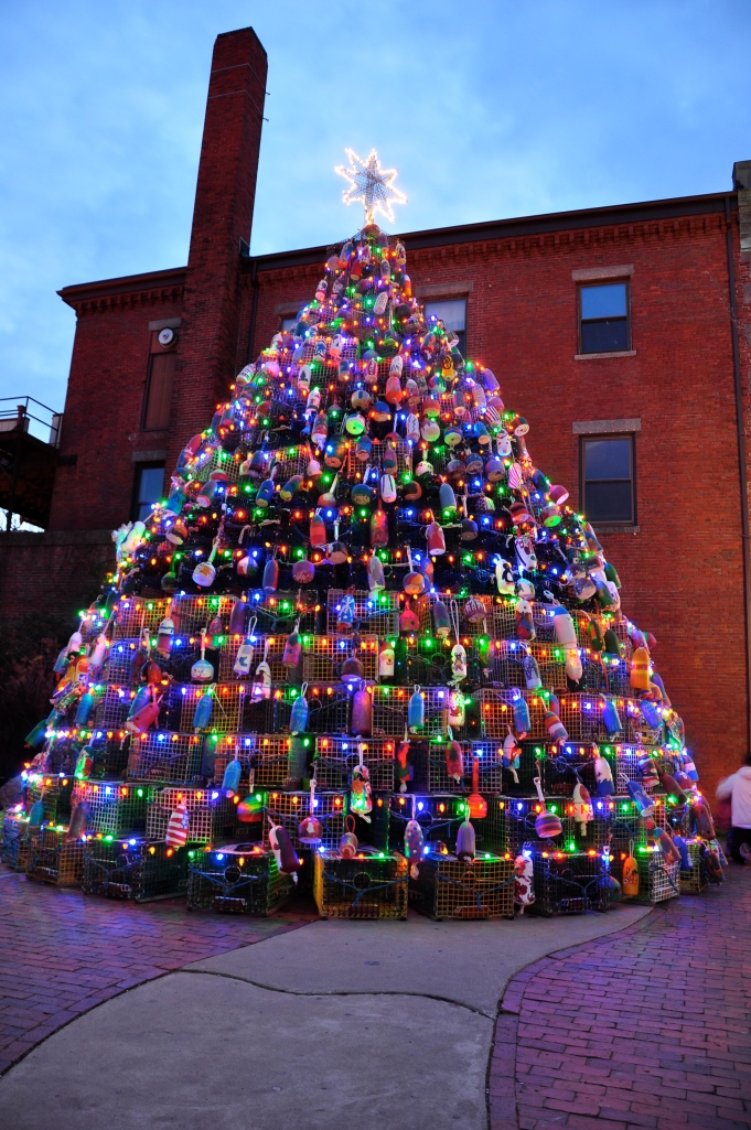 Christmas Tree Augusta Maine