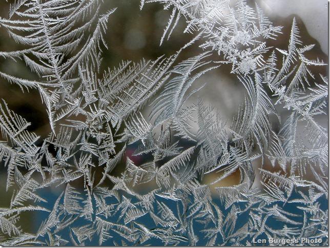 IceCrystals12-14'13_2358