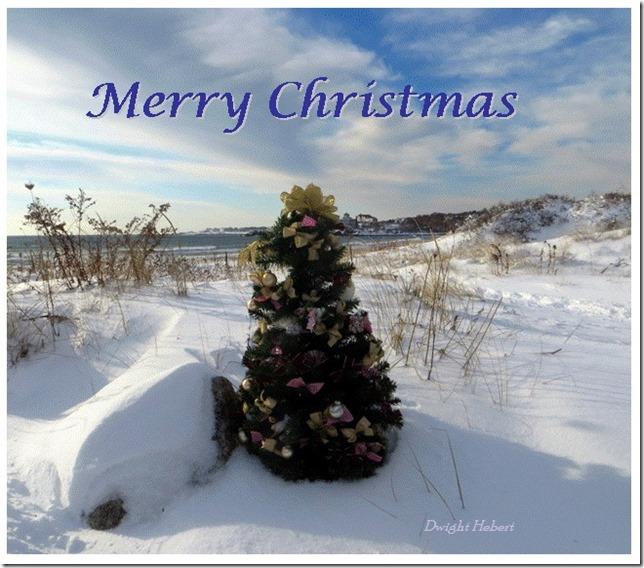 Merry Christmas Gloucester 2013