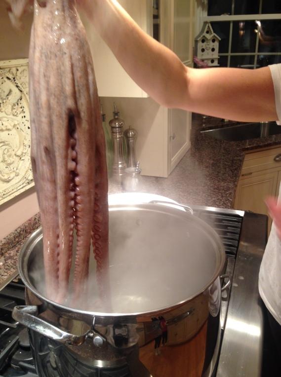 octopus salad (9)