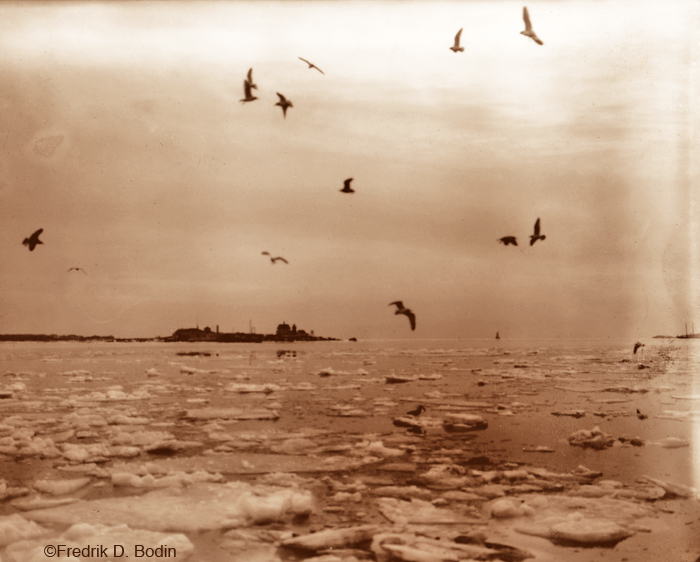 This photo of Gloucester Harbor with ice flows was taken in 1918. The harbor has been frozen solid in the past.