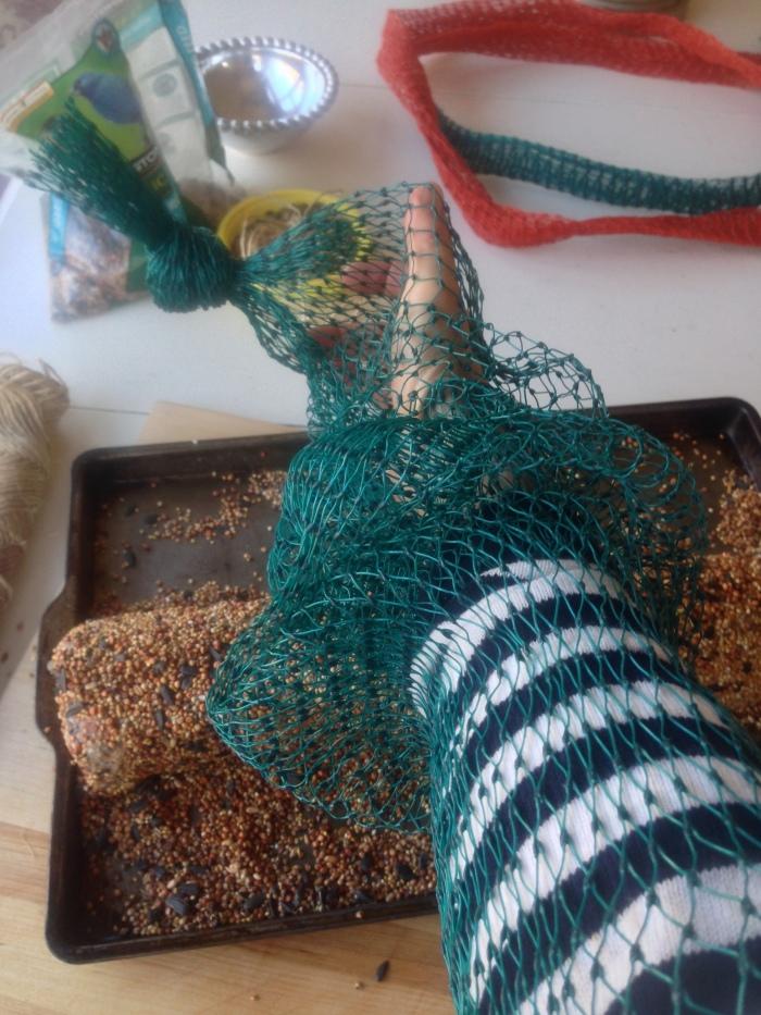 bird feeder and food reipe (46)