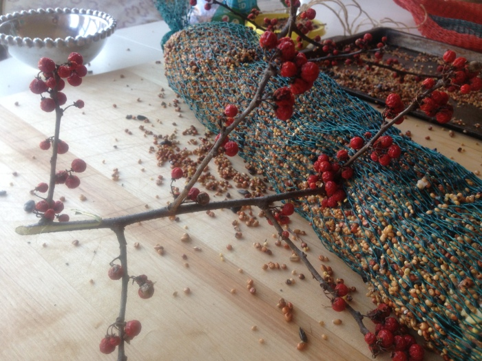 bird feeder and food reipe (55)