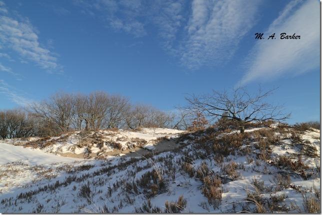 Cranes Beach 1139