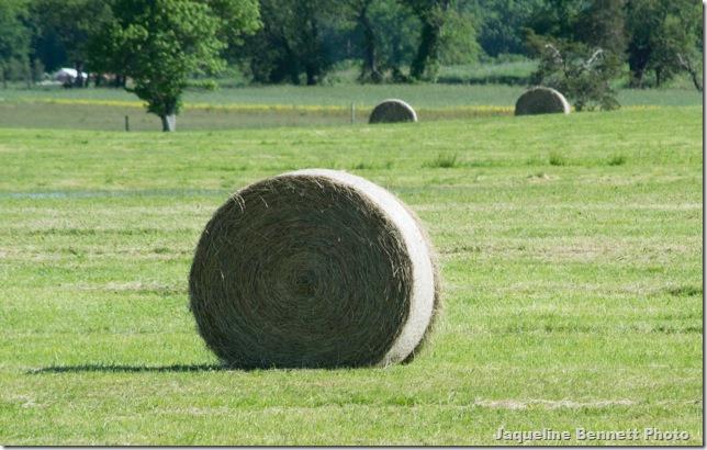 haystackclose