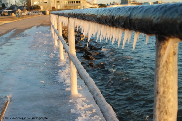 January 8, 2014 Nature's Art