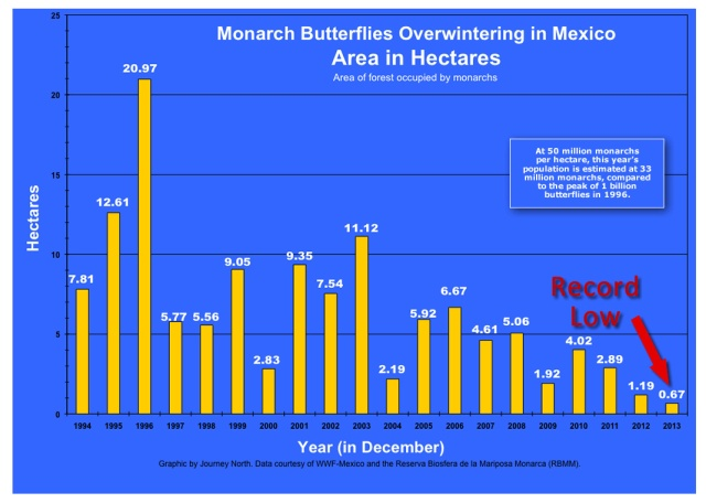 Monarch Butterfly Overwintering Graph Journey North