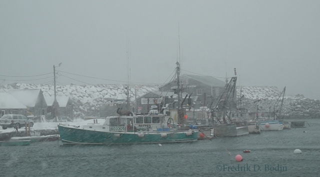 Day one of storm, although the real storm starts tonight. Pigeon Cove Harbor early afternoon 1/2/14. Nasty.